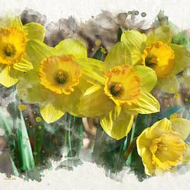 Christina Rollo - Spring Daffodils Watercolor Art