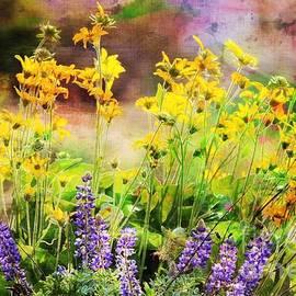 Sharon Johnston - Spring Glorious Spring