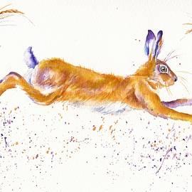 Debra Hall - Spring Hare