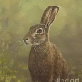 Sean Conlon - Spring Hare