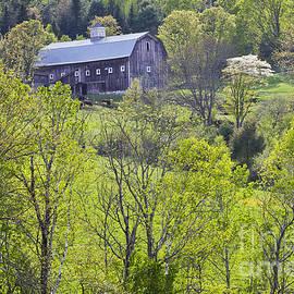 Alan L Graham - Spring Hillside Barn
