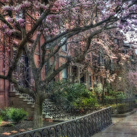 Joann Vitali - Spring in Boston - Back Bay 2