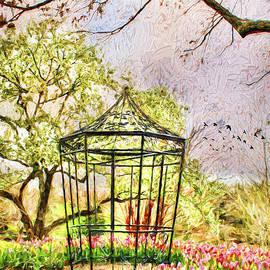 Darren Fisher - Spring in the Garden