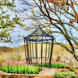 Darren Fisher - Spring In The GardenII