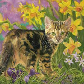 Lucie Bilodeau - Spring Kitten