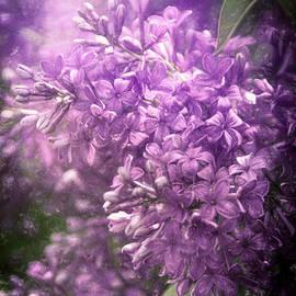 Janice Rae Pariza - Spring Lilac Burst