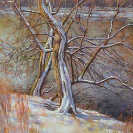 Fiona Craig - Spring Snowfall 1