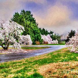 Darren Fisher - Spring Storms