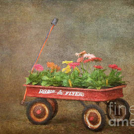 Jayne Carney - Spring Wagon