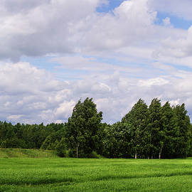 Jenny Rainbow - Spring Windy Day on Green Field