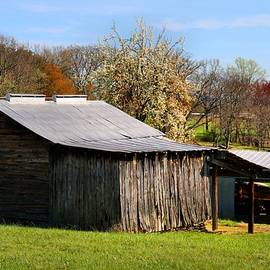 Kathryn Meyer - Spring Woods and Barn