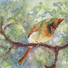 CheyAnne Sexton - Springtime Female Cardinal watercolor