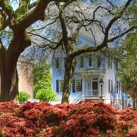 Linda Covino - Springtime in Savannah