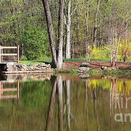 Marcel  J Goetz  Sr - Springtime Pond In Connecticut