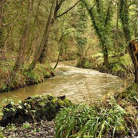 Robert Murray - Springtime Riverbank