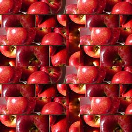 Tina M Wenger - Square Apples