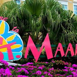Laurel Talabere - Welcome to St. Maarten