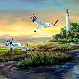 Daniel Butler - St. Marks Lighthouse - Call of the Whooping Cranes