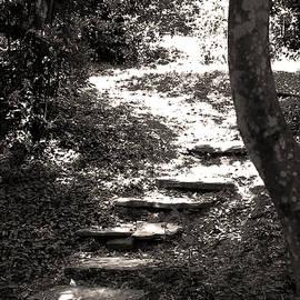Damijana Cermelj - Stairs