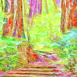 Joel Bruce Wallach - Stairway Through The Redwoods - Tamalpais California
