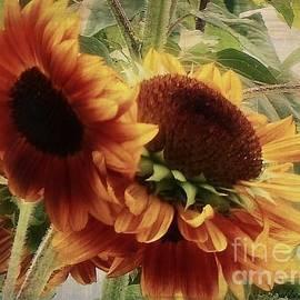 Bobbee Rickard - Sunflower Floral Series
