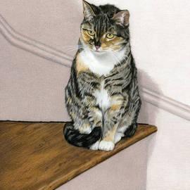 Sarah Batalka - Stanzie Cat