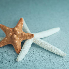 Starfish on Aqua - Tom Mc Nemar