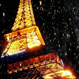 Marisela Mungia - Starlit Paris Skies