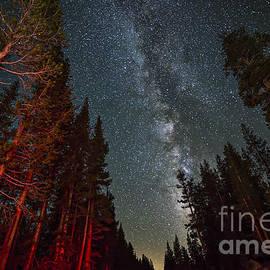 Art K - Starry Night in Yosemite