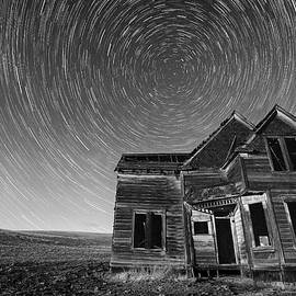 Patrick Campbell - Starry Night