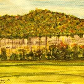Larry Farris - Steele Creek Cliffs