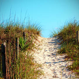 Cynthia Guinn - Steep Beach Path