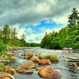 David Patterson - Stepping Stones on the Moose River
