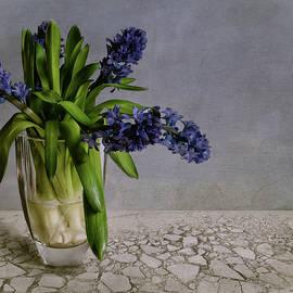 Claudia Moeckel - Still Life With Hyacinth