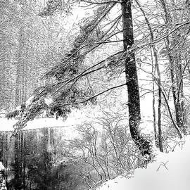 Betsy Zimmerli - Still Snowing