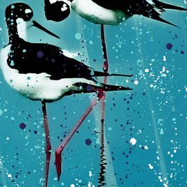 Barbara Chichester - Stilt Splash