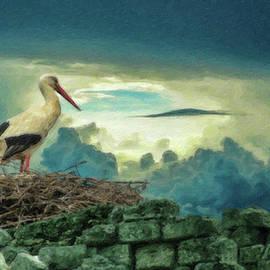Dean Wittle - Stork Nest - BRD1051966