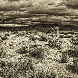 Roger Passman - Storm Clouds over the Mohave Desert