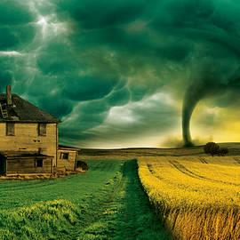 Dhouib Skander - Storm in the Field