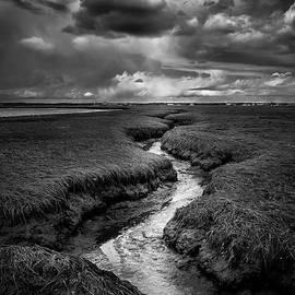 Scott Thorp - Storm over the salt marsh