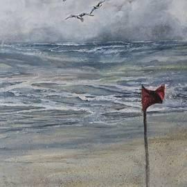Anne Buffington - Storm Warning