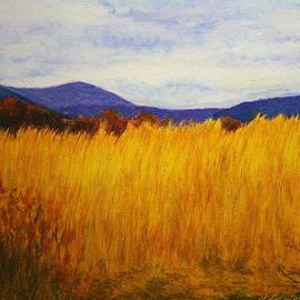 Marna Edwards Flavell - Straw Field