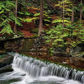 Artur Bogacki - Stream With Water Cascade In Autumn Forest