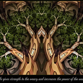 Missy Gainer - Strength to the Weary