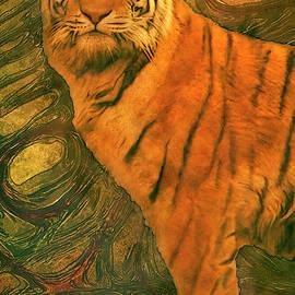 Jack Zulli - Striped Cat