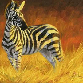 Lucie Bilodeau - Stripes