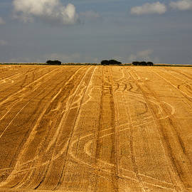 Stubble field after harvest  Deep Dale Thixendale Yorkshire Wolds England