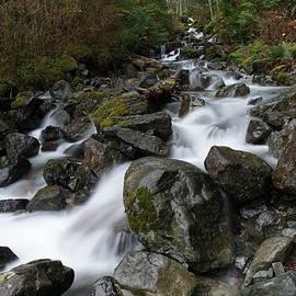 Jeff Swan - Stunning water
