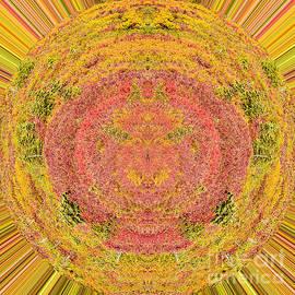 Subalpine Mandala