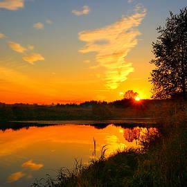 Yuri Hope - Suburban pond at sunset